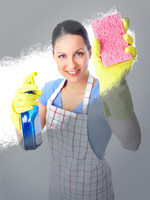 Maid Services Germantow
